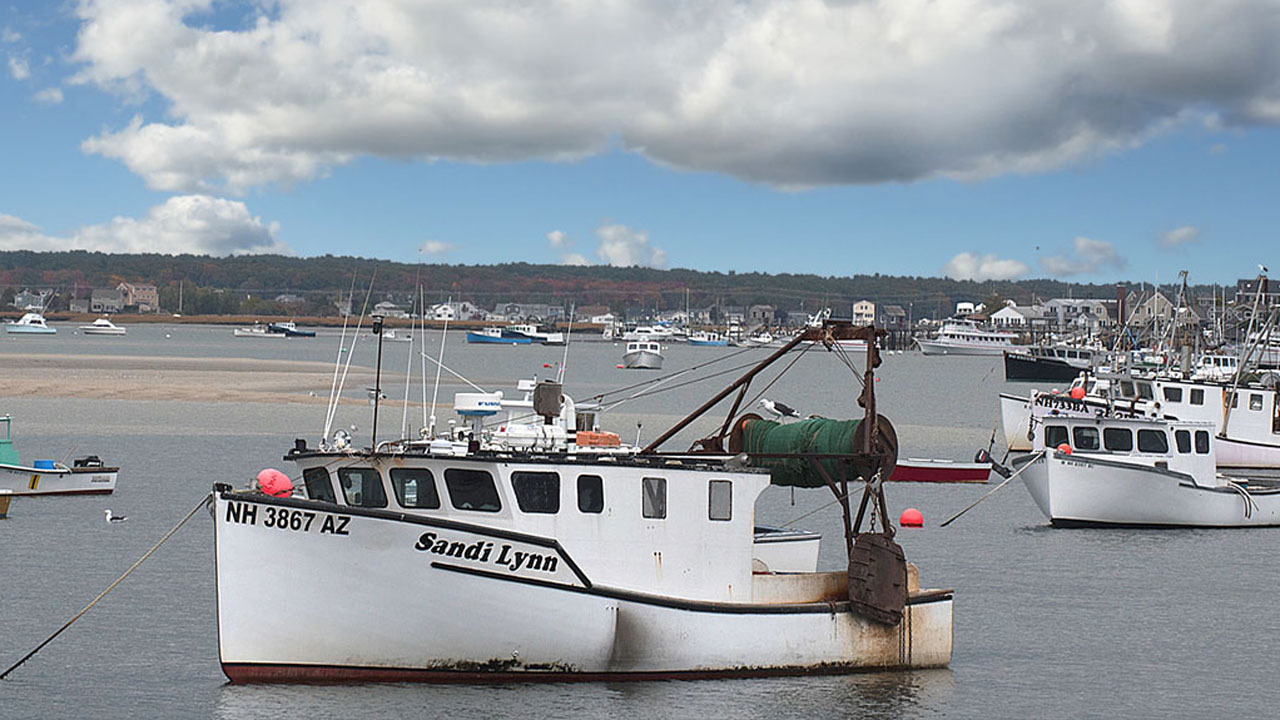 Saving New England Fisheries